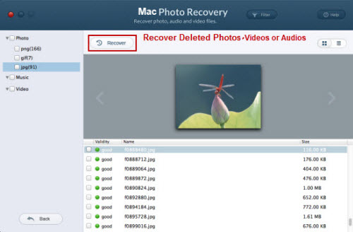recover files from Nikon Df