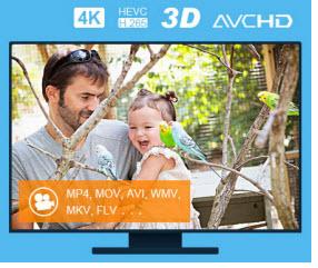 Best Video Converter for Windows or Mac